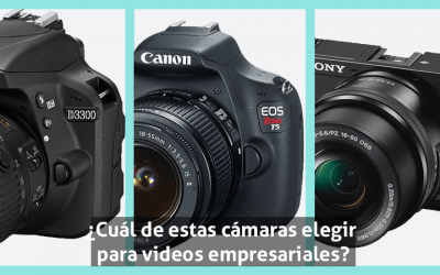 Nikon d3300-Canon T5-Sony alpha 6000-cámara para video