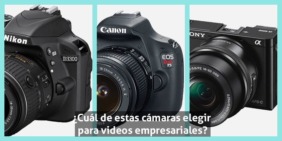 Nikon_d3300-Canon_T5-Sony_6000